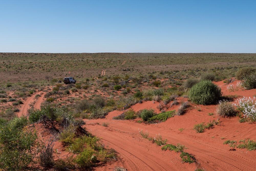 Heading into the deep backcountry of the Simpson Desert. | Photo: Jonathan and Roseann Hanson
