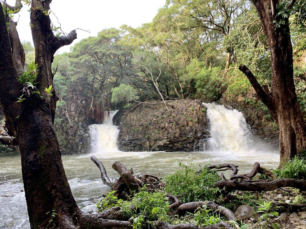 Twin Falls: The Road to Hana