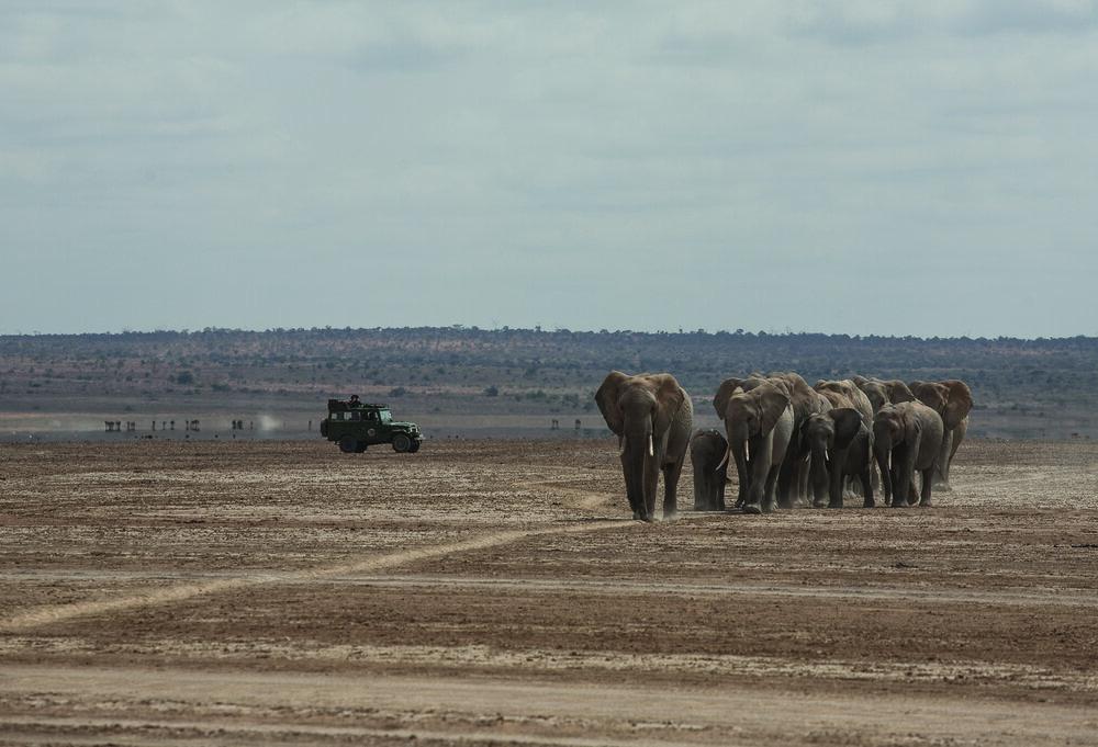 Land Cruiser on Safari in Kenya. | Jonathan Hanson