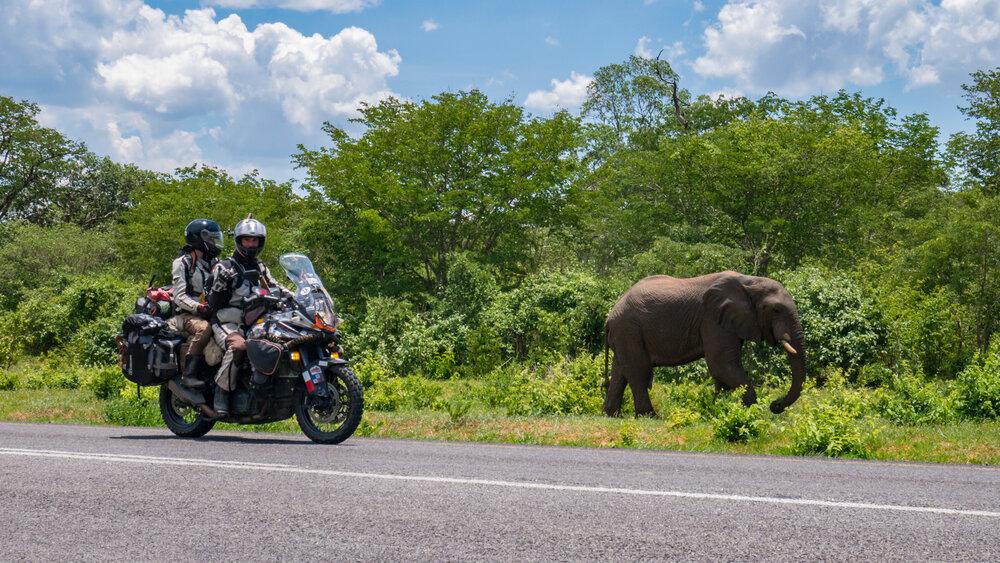 Tim and Marisa Notier explore Africa (Image: Notier's Frontiers)
