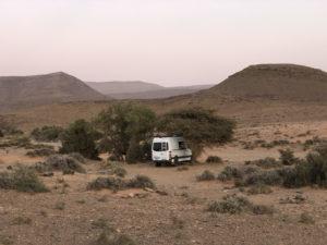 Sprinter in the desert